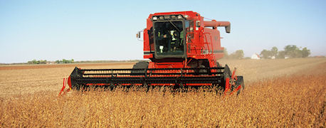 soybean harvest red tractor
