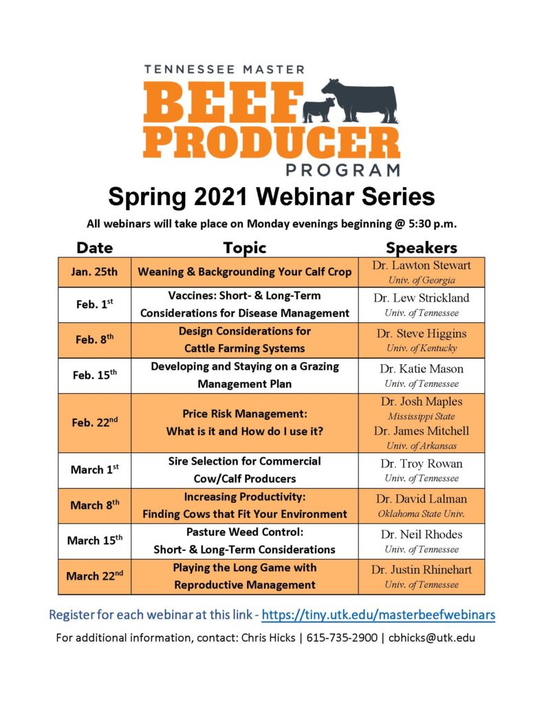 Flyer for the 2021 Tennessee Master Beef Producer Program Webinar Series